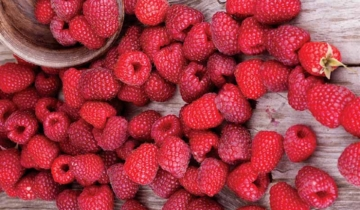 Supplement Spotlight: Red Raspberry Leaf
