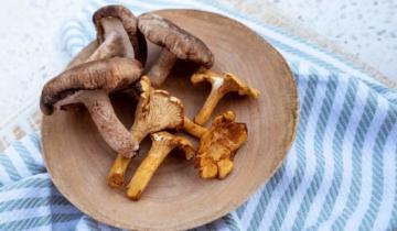 Food Facts: Mushrooms